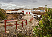 Fishing sheds along the water's edge of the Atlantic coastline; Newfoundland, Canada