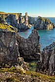 Rugged rock cliffs along the Atlantic coastline; Newfoundland, Canada