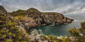 Rugged cliffs along the Atlantic coastline; Newfoundland, Canada