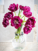 A bouquet of purple tulips in a decorative vase; Surrey, British Columbia, Canada