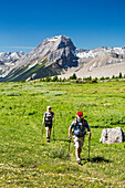 A man and woman hiking along an alpine meadow trail with mountains and blue sky in the background; Kananaskis Country, Alberta, Canada