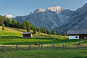 walderalm, spray tip of Kars, Grace forest, Karwendel, Tyrol, Austria