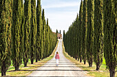 Castiglione d'Orcia, Orcia valley, Siena, Tuscany, Italy, A young woman in casual clothes is walking along a country road