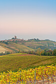 Italy, Piedmont, Cuneo District, Barolo, Langhe Barolo at sunrise