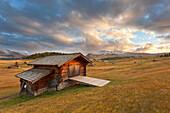 A barn at Seiseralm/Alep di Siusi, Dolomites, Kastelruth, South Thyrol, Bolzano provine, Italy