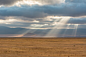 Tanzania, Africa,Ngorongoro Conservation Area,sunshine in the clouds