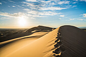 Footsteps on Khongor sand dunes in Gobi Gurvan Saikhan National Park. Sevrei district, South Gobi province, Mongolia.