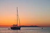 Sailing boat at sunrise, on background Capraia Island (Macinaggio, Rogliano, Bastia, Haute-Corse department, Corsica, France, Europe)