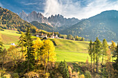 Funes Valley, Dolomites, province of Bolzano, South Tyrol, Italy, Autumn in Santa Maddalena and the peaks of Odle in the background