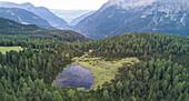Panoramic of woods and lake, Entova Alp, Malenco Valley, Sondrio province, Valtellina, Lombardy, Italy