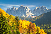 Odle Mountains and colorful trees, Funes Valley, Bolzano Province, Trentino Alto Adige, Italy