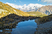 Aerial view of Arpy Lake in autumn, Morgex, Aosta Valley, Italy, Europe