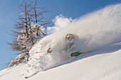 Freeride, sport, Alps. Freeride in the powder of italian Alps