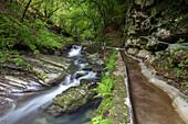 The river Breggia at the Bruzella mill, Muggio Valley, Mendrisio District, Canton Ticino, Switzerland.