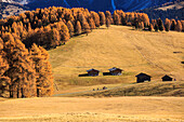 Alpine landscape during autumn, Alpe di Siusi/Seiser Alm, Dolomites, province of Bolzano, South Tyrol, Italy