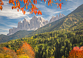 Odle Mountain view from Funes Valley, with cherry trees and a clear blue sky, Funes Valley, Bolzano Province, Trentino Alto Adige, Italy