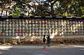Ceremonial barrels of sake, Yoyogi Park, Tokyo, Japan, Asia