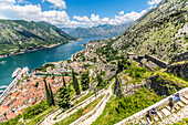 Hikers walking the old city walls during the daytime above the Bay of Kotor, UNESCO World Heritage Site, Montenegro, Europe