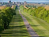 Windsor Castle from Long Walk, Windsor, Berkshire, England, United Kingdom, Europe