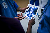 Doctors examining x-ray of pelvis and spine on digital tablet
