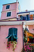 Colourfull windows in Monterosso al Mare, province of La Spezia, Cinque Terre, Liguria, Italy, Europe