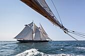USA, Massachusetts, Cape Ann, Gloucester, America's Oldest Seaport, Gloucester Schooner Festival, schooner sailing ships.