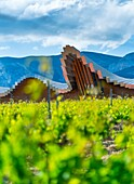 YSIOS WINERY, This pixilated-looking landmark was designed by architect Santiago Calatrava and opened its doors in 2001. This extremely long building can be seen from kilometers away. Gigantic bars of aluminum form the wavy roof, which mirrors the mountai