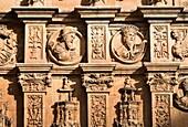 Detalle de la portada del Convento de San Esteban. Salamanca. Castilla-León. España. Europa.