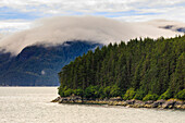 Mist, rocky shoreline and forest, Inian Islands, Icy Strait, between Chichagof Island and Glacier Bay National Park, Alaska, United States of America, North America