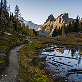 The Alpine Circuit Trail at Lake O'Hara, Yoho National Park, UNESCO World Heritage Site, British Columbia, Canadian Rockies, Canada, North America