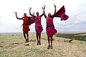 Masai warriors doing the traditional jump dance, Masai Mara Game Reserve, Kenya, East Africa, Africa