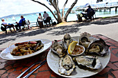 Dish: Oysters and Seafood, North Island, New Zealand
