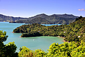 near Te Mahia, Kenepuru Sound, Marlborough Sounds, South Island, New Zealand