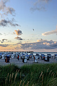 Dune vegetation with beach chairs and kites, Ostseeküste, Mecklenburg-Western Pomerania, Germany