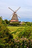 Windmill at Elmenhorst Lichtenhagen, Baltic Sea Coast, Mecklenburg-Western Pomerania, Germany