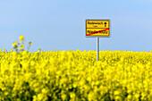 Town sign with rape field, Klützer angle, place Klütz, Baltic Sea coast, Mecklenburg-Western Pomerania Germany