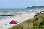 Beach with beach shell, Vitte, Hiddensee, Rügen, Ostseeküste, Mecklenburg-Western Pomerania, Germany