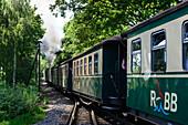 Steam Railway Rasender Roland, Rügen, Ostseeküste, Mecklenburg-Western Pomerania, Germany