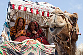 Turkmen wedding in Golestan, Iran, Asia