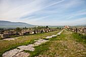 Roman city of Volubilis in Morocco, Africa