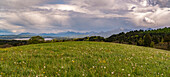Spring meadow over the Staffelsee with view to the foothill of the bavarian alps with mount Heimgarten and Herzogstand, Bad Kohlgrub, Upper Bavaria, Germany