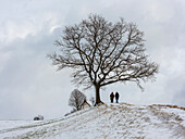 A couple on the hill in front of the Mesnerhauskapelle in winter, Aidling, Upper Bavaria, Germany