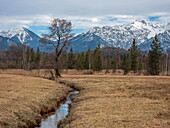A creek through the Murnauer Moos, in the background the Bavarian Prealps with Herzogstand and Heimgarten, Grafenaschau, Upper Bavaria, Germany