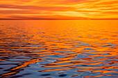 Beautiful sunset light reflected on a calm ocean near Isla San Marcos, Baja California Sur, Mexico, North America