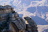 South Rim rock formations, Grand Canyon, UNESCO World Heritage Site, Arizona, United States of America, North America