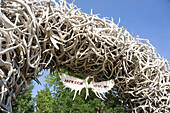 Large arch made of elk antlers, Jackson Hole, Wyoming, United States of America, North America
