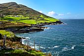 Coastal View, Ring of Beara, Beara Peninsular, Wild Atlantic Way, County Cork, Munster, Republic of Ireland, Europe