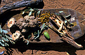 Aboriginal bush food including witchety grubs
