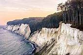 Autumn coloration on the chalk cliffs, Ruegen, Baltic Sea coast, Mecklenburg-Vorpommern, Germany