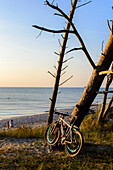 Bicycles at Darsser Weststrand, Baltic Sea Coast, Mecklenburg-Vorpommern Germany